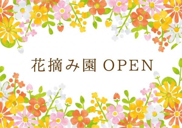 花摘み園アイキャッチ-600x425