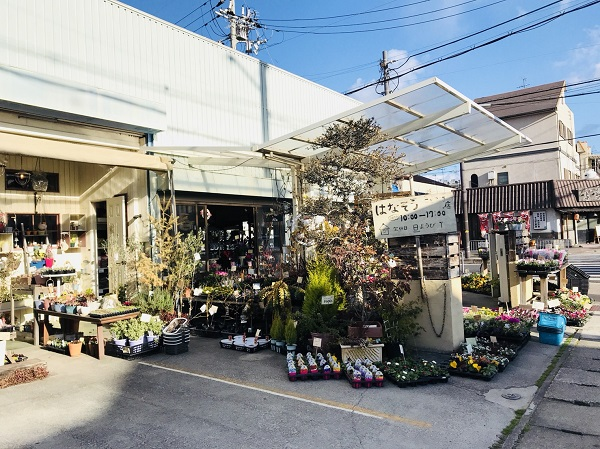 泉大津葉菜草寿店